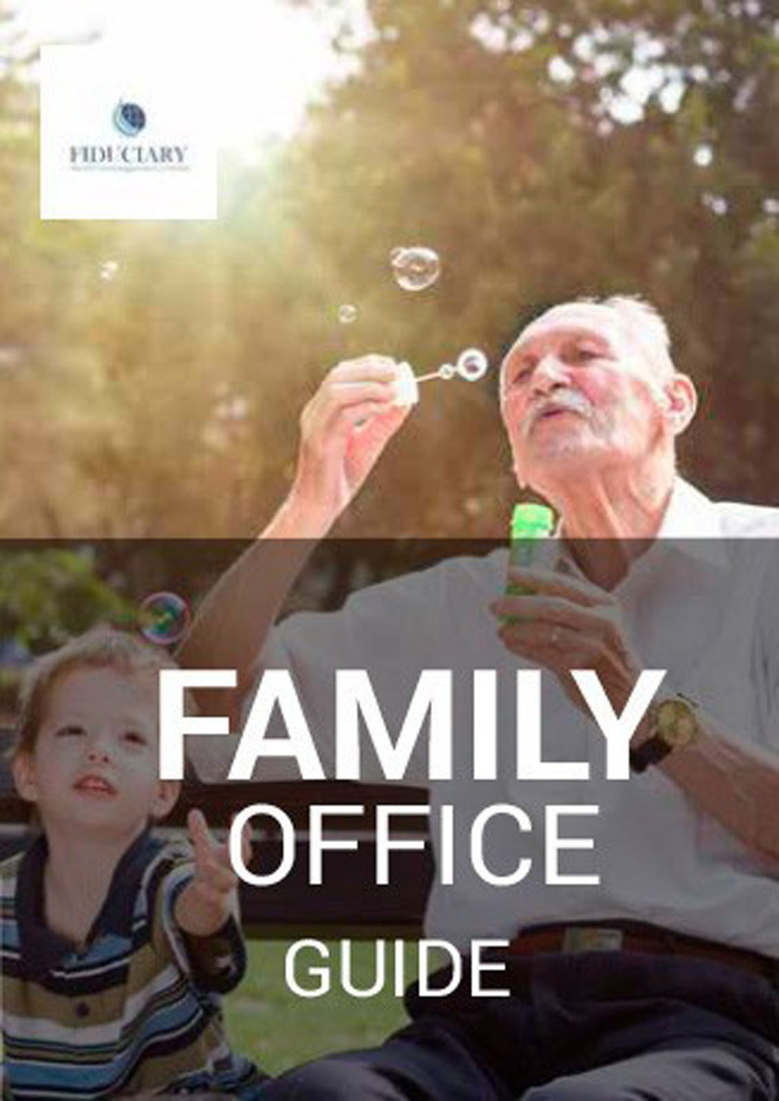 Family Office Guide Image