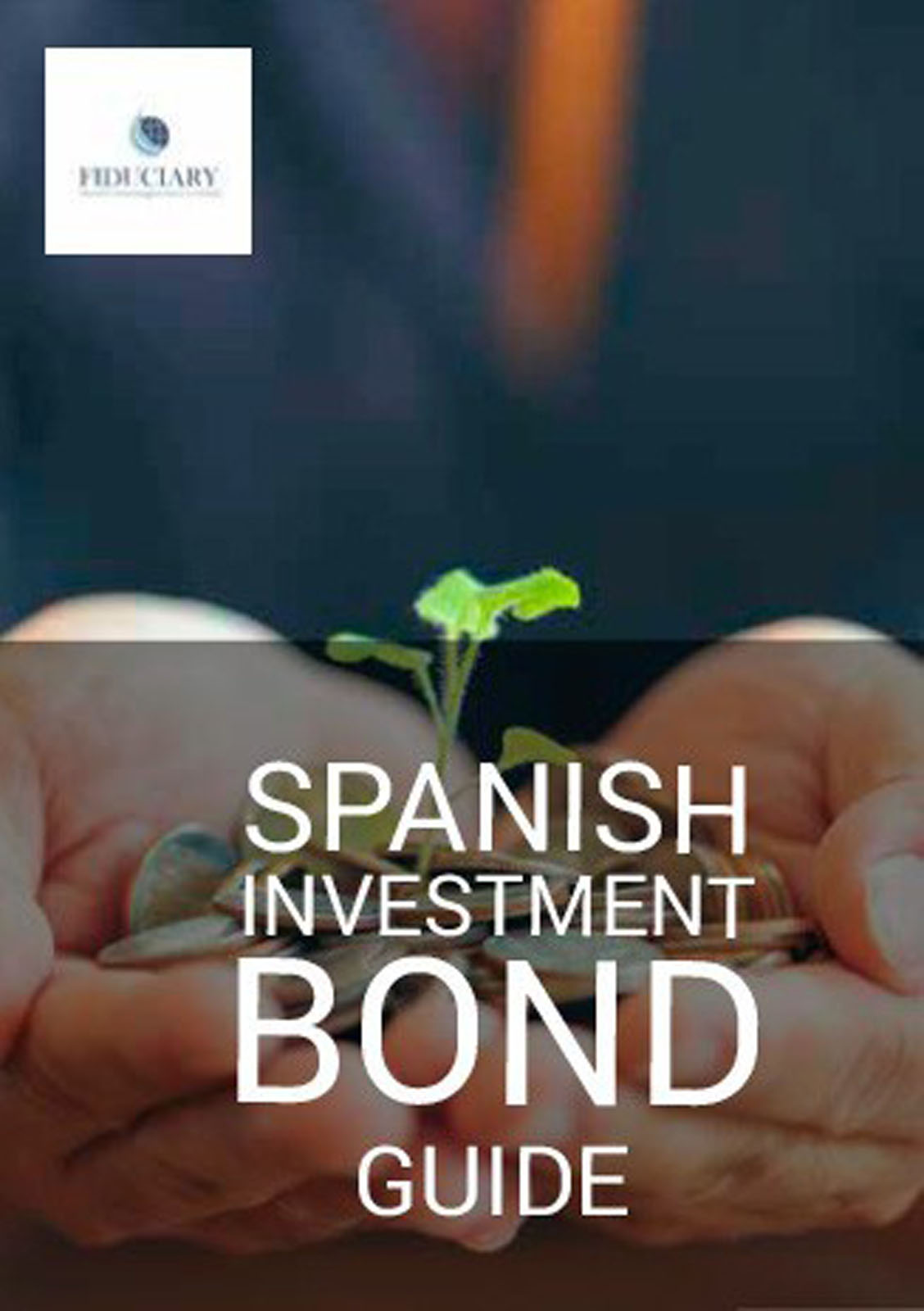 Spanish Investment Bond Guide Image